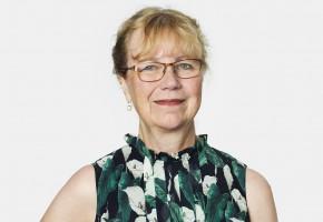 Ann-Beth Aronsson, IVL