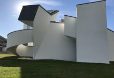 TMF:s studieresa i Schweiz